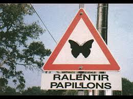 ralentir papillon !